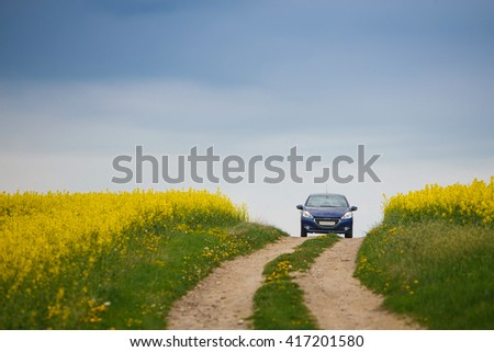 Blue small car rides on a rural road near field rapeseed - stock photo