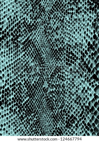 Blue snake skin - stock photo