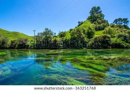 Blue Spring which is located at Te Waihou Walkway,Hamilton New Zealand. It internationally acclaimed supplies around 70% of New Zealandâ??s bottled water because of the pure water. - stock photo