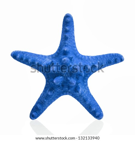 Blue Star Fish Clip Art Blue starfish isolated on