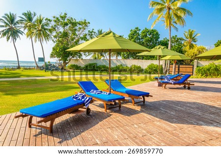 Blue sunbeds at the swimming pool against palm trees and blue sky - stock photo