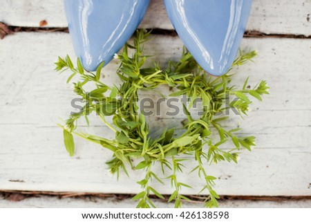 blue wedding shoes and green wreath - stock photo