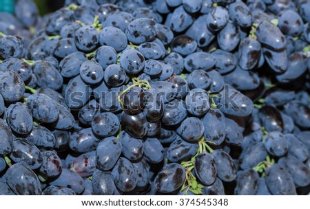 Blue wine grapes background - stock photo