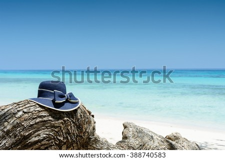 Blue woman's hat on tree near tropical beach, travel concept