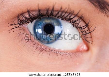blue women's eye closeup macro - stock photo