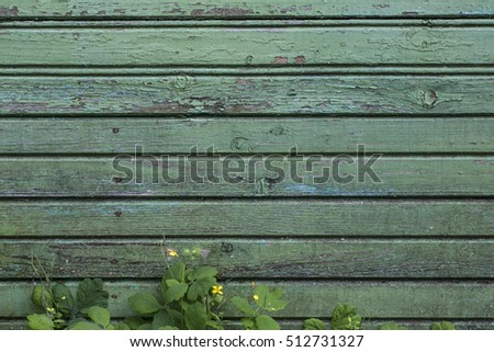 Blue wooden background with grass and yellow flower