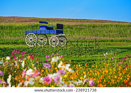 Blue wooden cart in Boon Rawd Farm, Chiangrai, Thailand - stock photo