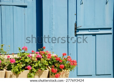 Blue wooden house door and geranium flowers in the boxes in sunny day. Brittany, France.  - stock photo