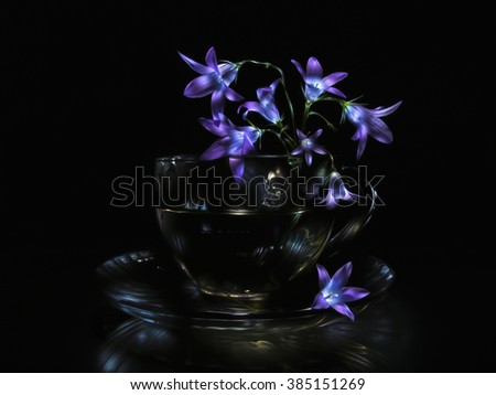 Bluebell flowers in transparent glass cup on saucer against black background. This picture done in light painting technique, composed from ~70 individual photos of same scene with different lighting.