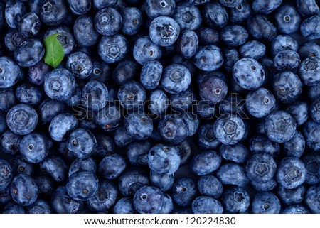 Blueberries as background with one little green leaf - stock photo