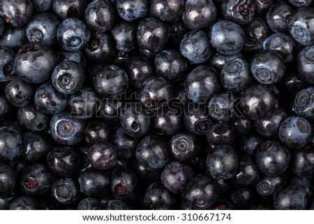blueberries collected manually. background - stock photo