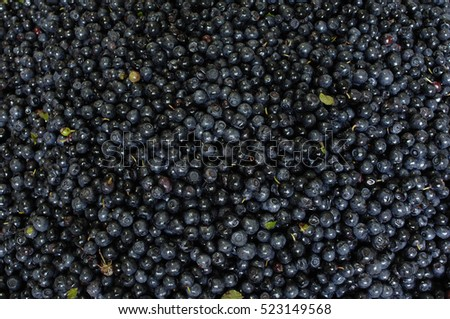 Blueberries health food