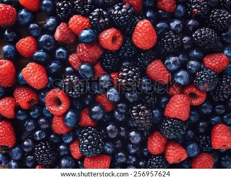 blueberries, raspberries and black berries shot top down - stock photo