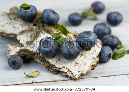 Blueberries with leaves on birch bark, closeup - stock photo
