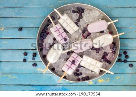 blueberries yogurt popsicle on ice cubes - stock photo