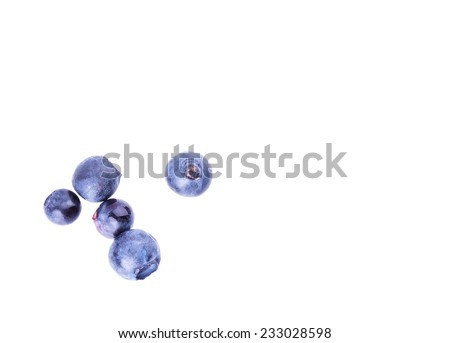 blueberry berry solated on white background - stock photo