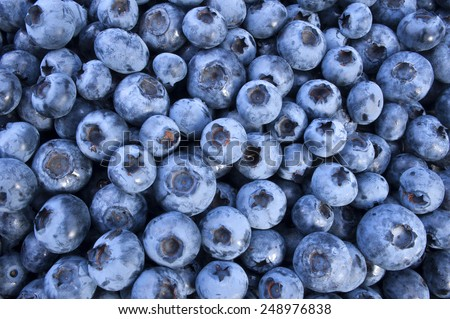 Blueberry, fruit as a background - stock photo
