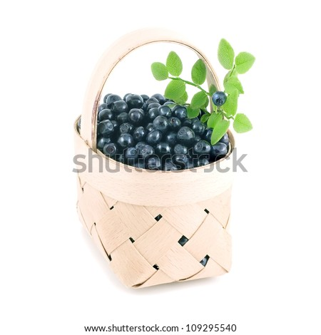Blueberry in the basket isolated on white - stock photo