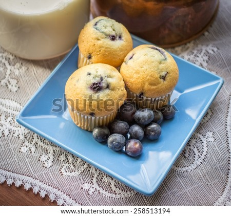 Blueberry Muffins. Fresh from the oven blueberry muffins. A delicious start to the day. - stock photo