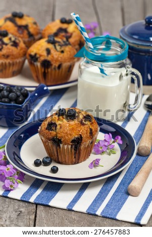 blueberry muffins with fresh blueberries. Selective focus.