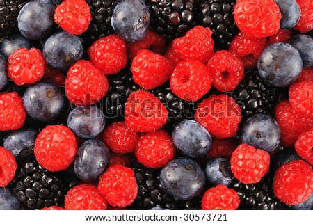 Blueberry, raspberry and blackberry patterned background material.