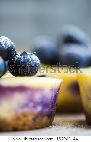 Blueberry topping of fresh whole berries on a baked cake or dessert, close up view with copyspace - stock photo