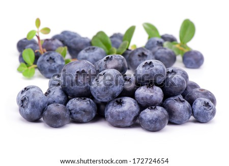 Blueberry  with green leaves  - stock photo