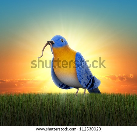 Bluebird standing in green grass, catching the worm as the sun rises behind him - stock photo
