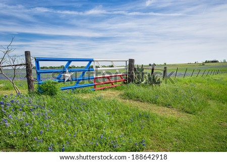 Bluebonnet field and a fence with gate along roadside in Texas spring - stock photo