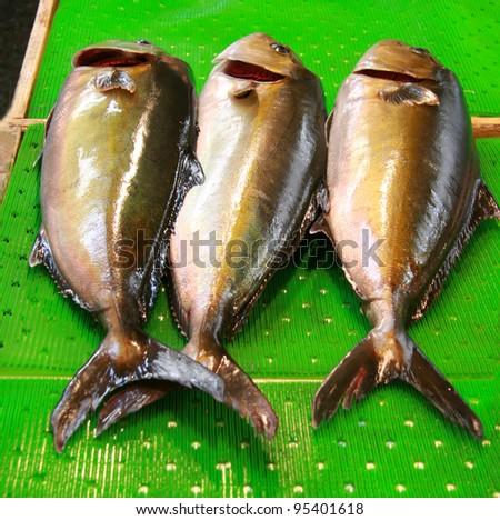 Bluefin tuna catch Medditerranean sea - stock photo