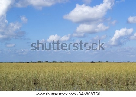 Blues sky and white puffy clouds over the swamp. Freedom of the nature. Everglades in Florida. USA - stock photo