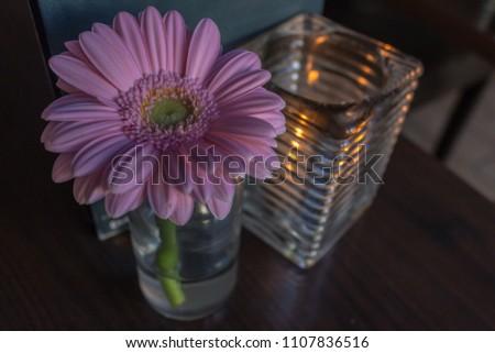 Blume Kerze Vase Dekoration Rosa Stock Photo Royalty Free