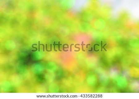 Blur abstract background of natural grass field with flower. Blurry view of meadow with bokeh effect. Defocus leaves  and flora tree . - stock photo