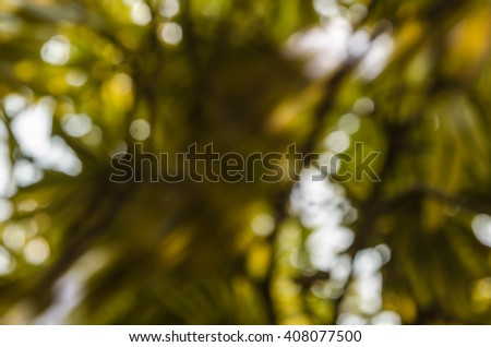 blur background and bokeh - stock photo