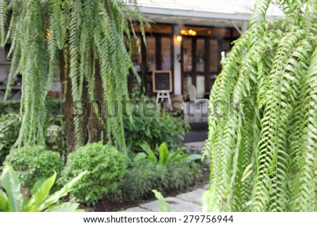 blur garden park nature fern tree and wood house shop adstract background - stock photo