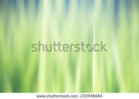 blur green grass background - stock photo
