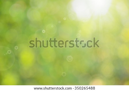 Blur green nature bokeh with sun light abstract background.