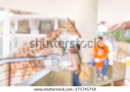 blur image of Girl Feeding Giraffe at Zoo for background usage. - stock photo