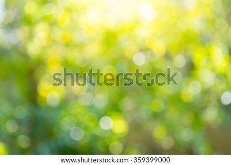 Blur image of sun light in forest background. - stock photo