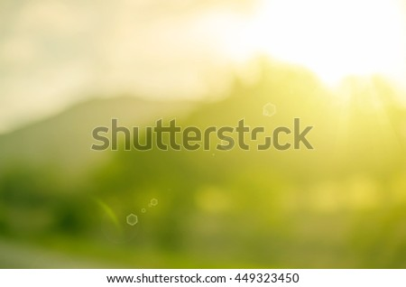 Blur nature green park with bokeh sun light copy space abstract background. Travel and environment concept. Vintage tone color style.