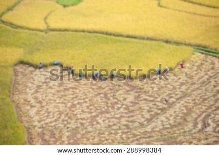 Blur of farmer walk in the field background. - stock photo