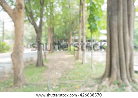 blur soil walkway in the park, blur Trees in a row in the park, place to exercise and relax, good weather, blur big tree in the park, abstract blur background - stock photo
