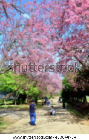 Blurred abstract background of Tourists sakura