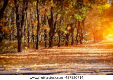 blurred autumn alley with fallen leaves - stock photo