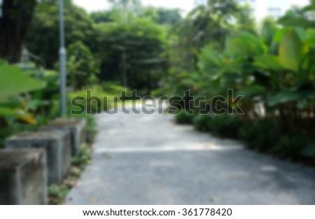 blurred background : a walk way in the garden - stock photo