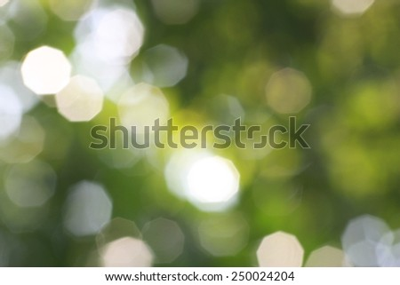 Blurred background nature background - stock photo