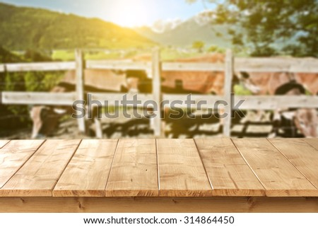 blurred background of alps and brown cows with table  - stock photo