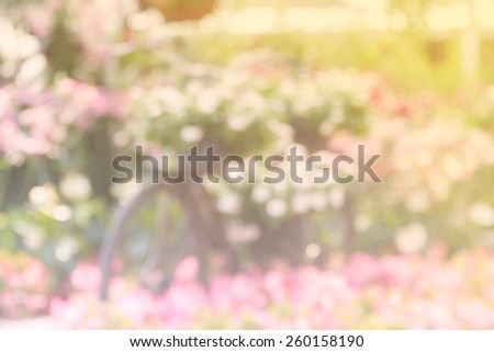 Blurred background of  bicycle decorate in flower garden - Color filter style pictures