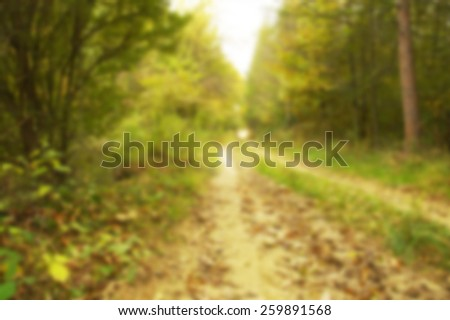 Blurred beauty autumn forest road with leaves - stock photo