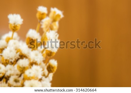 Blurred bouquet of dried flowers. - stock photo